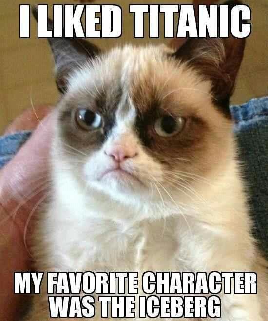 Grumpy Cat IS always amazing - credit to: swipurr.com