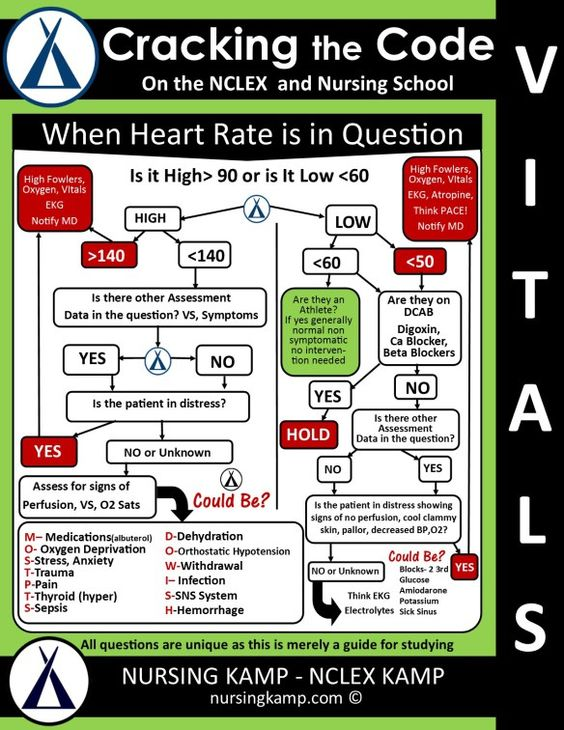 Ems Critical Thinking Questions For High School - image 5