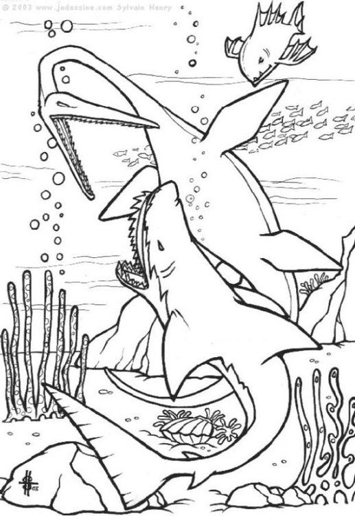 Image Result For ร ปไดโนเสาร ระบายส Shark Coloring Pages Dinosaur Coloring Pages Animal Coloring Pages