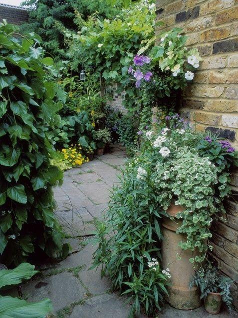 Shady garden garden gardening garden ideas mini garden inspirational gardens shady garden