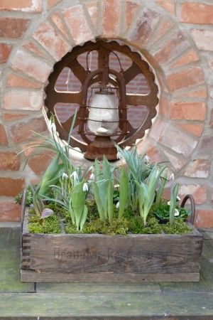 Holzbierkiste mit Tulpen