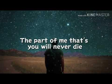 Lady Gaga Always Remember Us This Way Lyrics Video Youtube