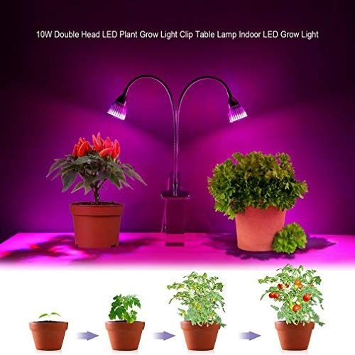 Do You Need Full Spectrum Grow Lights If You Want To Nerd Out And Start Calculating The Actual Par In Your Grow Lights For Plants Led Grow Lights Grow Lights
