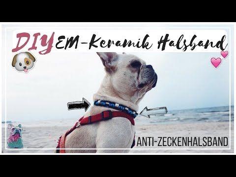 Diy Paracord Em Keramik Halsband Anti Zecken Youtube Em Keramik Halsband Paracord Halsband
