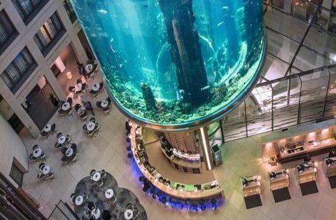 Emprunter L Ascenseur Aquatique Du Radisson Blu Hotel A Berlin Berlin Hotel Aquatique