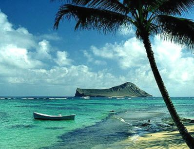 Enjoy Your vacation on the islands of hawaii