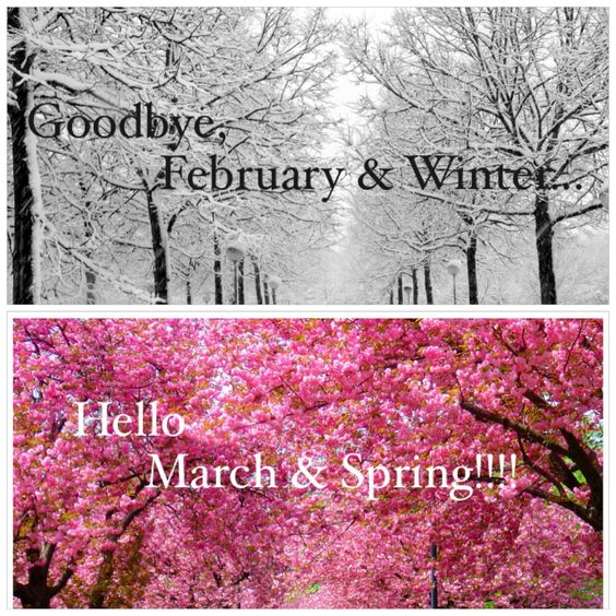 Risultati immagini per goodbye february hello march