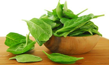 Zelf spinazie kweken en zaaien in de tuin OOGSTEN - TELEN - MOESTUIN