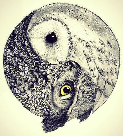 hipster owl - Buscar con Google