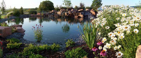 #Waterfeature #Waterfall #Pond #Swim