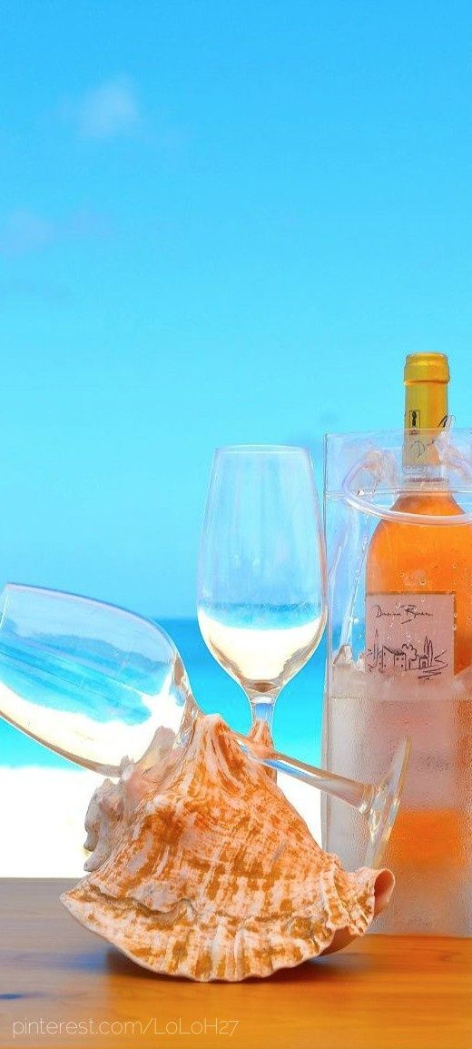 ~ What a beautiful picture ~ ocean view ~sea shells ~ white wine. :)