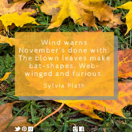 #Quote: Wind warns November's done with. The blown leaves make bat-shapes, Web-winged and furious. ~ Sylvia Plath