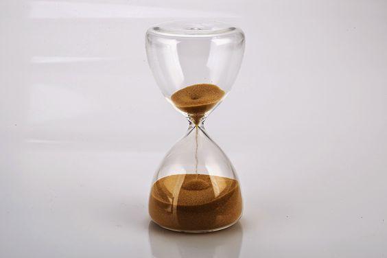Fichtiana: In der Natur gibt es keine Zeit.
