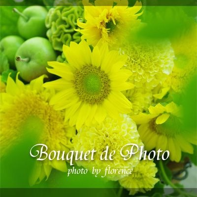Bouquet de Photo 120701