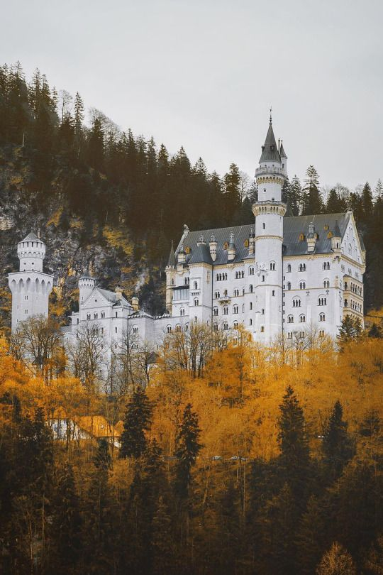 Neuschwanstein Castle Neuschwanstein Castle Hiking Trip Pictures
