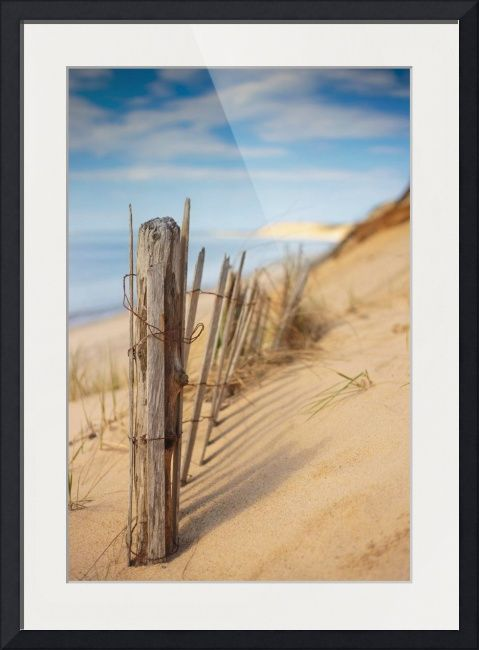Coastline By Dapixara Art Beach Scenes Massachusetts And Wall Art Prints