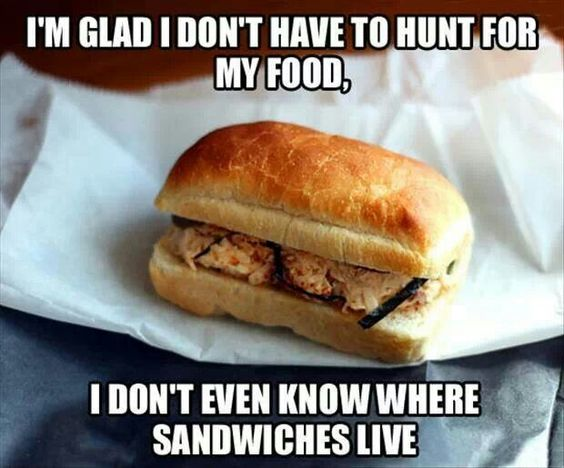 Hunting for sandwiches