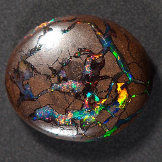Brilliant Gemstone Resembles a Prismatic Universe Bursting Out of Wood