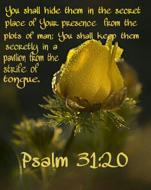 Psalm 31:20 You shall hide them in the secret place of Your presence From the plots  of man; You shall keep them secretly in a p… | Psalm 31, Psalms, Biblical verses