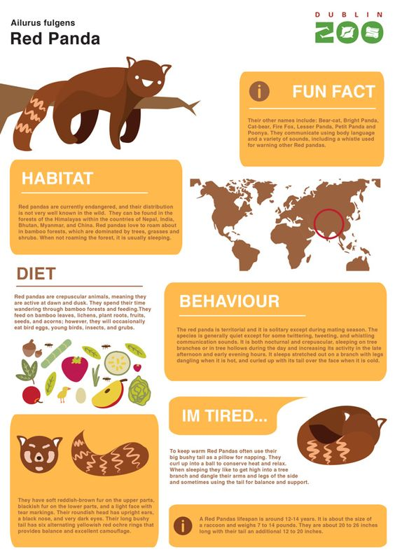 Zoo Infographic signage on Behance