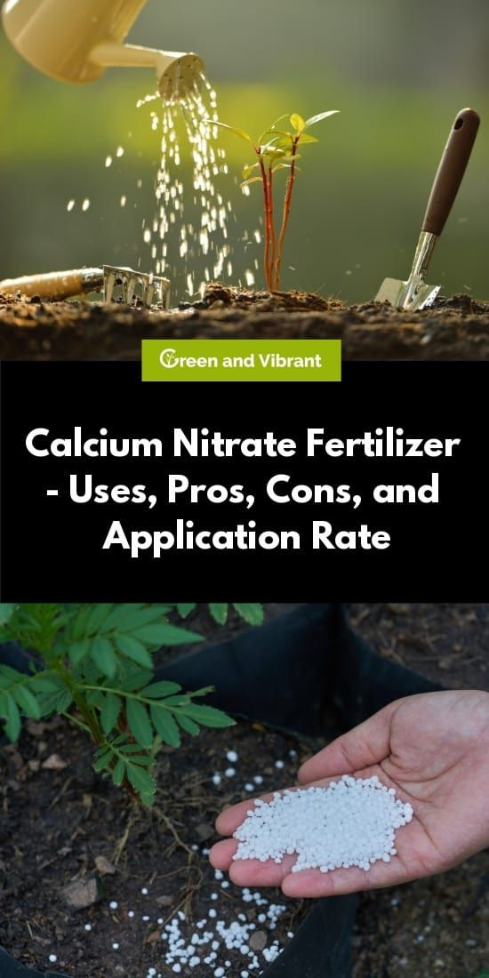 Calcium Nitrate Fertilizer Uses Pros Cons And Application Rate Plant Nutrients Fertilizer Pepper Plants