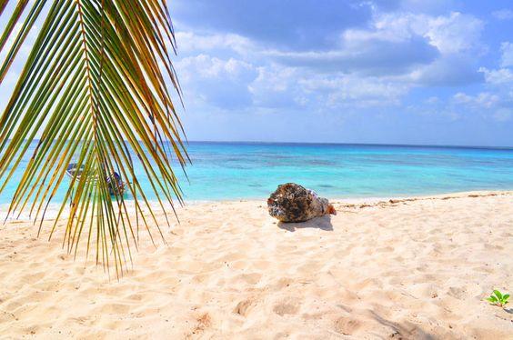 """Schon Christoph Columbus war von dieser Insel, die er bei seiner Entdeckung """"die Spanische"""" nannte, hellauf begeistert! Verständlich bei solch einem Ausblick, oder? Wer weiß, auf welcher Insel man diesen Traumstrand findet? Tipp: http://www.lastminute.de/reisen/dominikanische-republik/?lmextid=a1618_179_e30"""