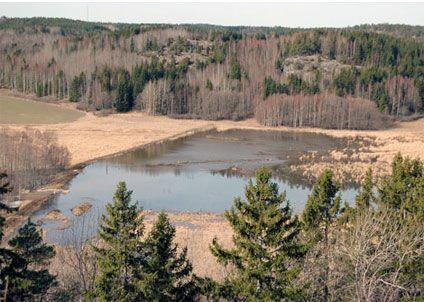 Söndag den 15 april arrangerar Sportfiskarna en gäddvåtmarksdag vid Snäckstaviks våtmark, Grödinge.
