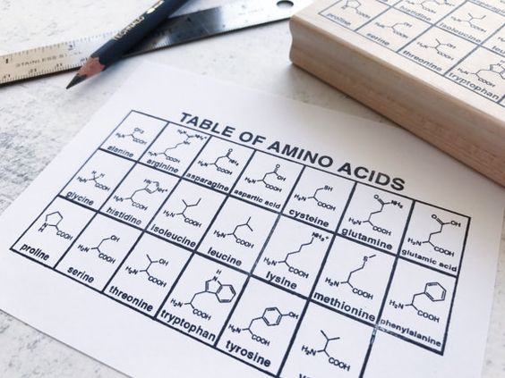 The Amino Acid Chemistry Chart Rubber Stamp Chemistry - amino acid chart