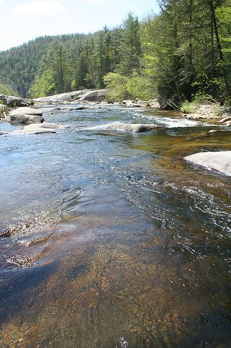 Fish places and the fly on pinterest for Fishing spots in nc