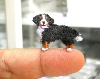 Mini dachshund stuff