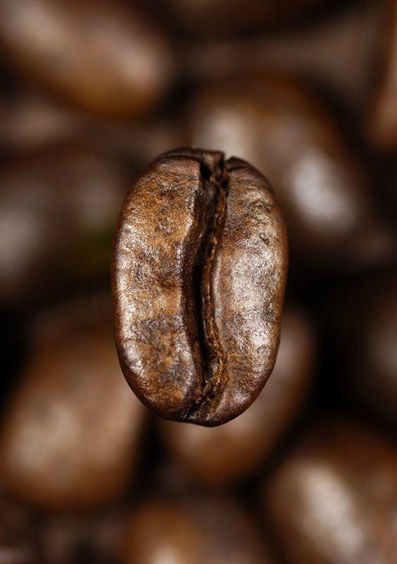 Coffee Bean Coffee Beans Coffee Roasting Coffee Drinks