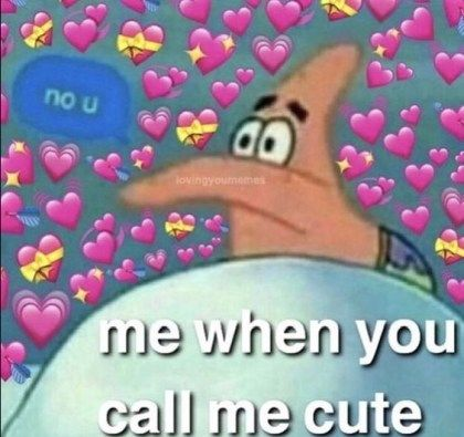 Me When You Call Me Cute The Funny Love Memes Cute Love Memes Cute Memes Love You Meme