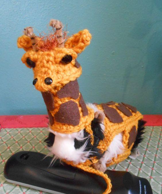 Guinea Pig Giraffe Sweater and Giraffe Hat  Guinea by Fancihorse