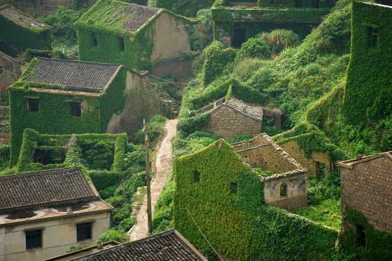 Green Village In Zhoushan - ChinaFotoPress via Getty Images/Getty Images