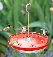 Picture of the HummZinger Excel Hummingbird Feeder