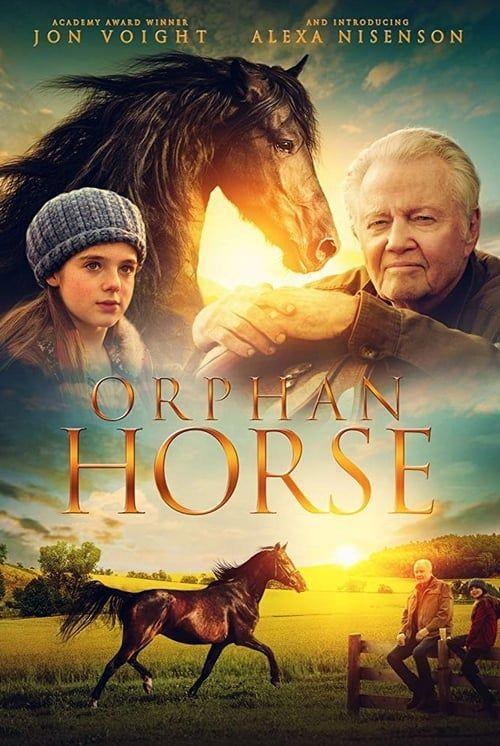Regarder Orphan Horse 2019 Film Complet En Streaming Vf Entier Francais Films Complets Films Gratuits En Ligne Telecharger Des Films