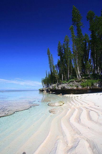 nouvelle calédonie pins colonaires, plage de cengeité by mathetdjam: