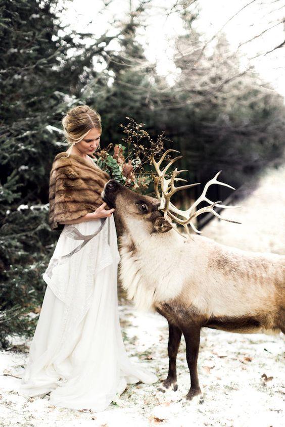 Winter bride and reindeer