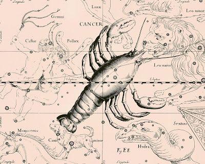Sisters' Warehouse: Stampe Antiche Segni Zodiacali - Antique Zodiac Si...