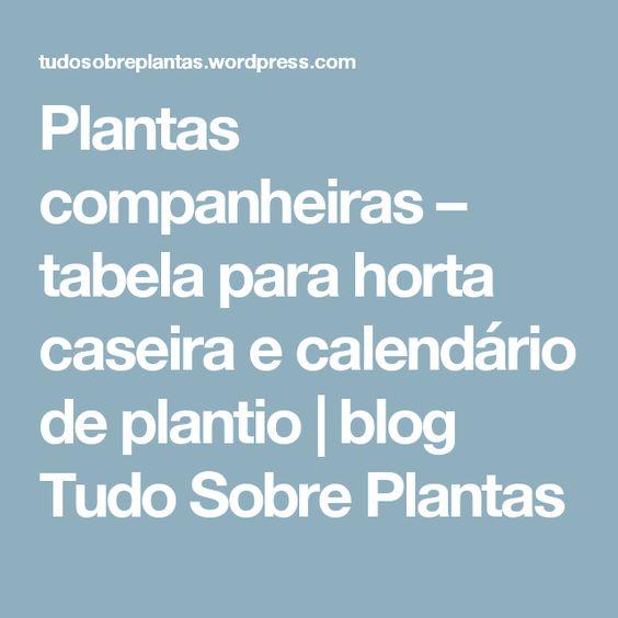 Plantas companheiras – tabela para horta caseira e calendário de plantio | blog Tudo Sobre Plantas