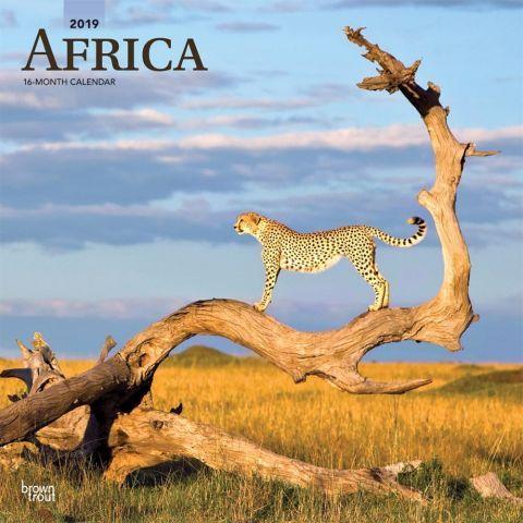 Africa 2019 Wall Calendar From The Wondrous Savanna To