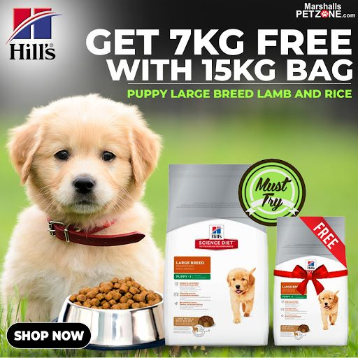 Hill S Puppy Food Large Breed Lamb And Rice 15 Kg At Lowest Price