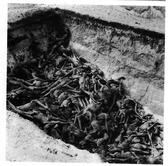 one of the mass graves at the concentration camp of bergen
