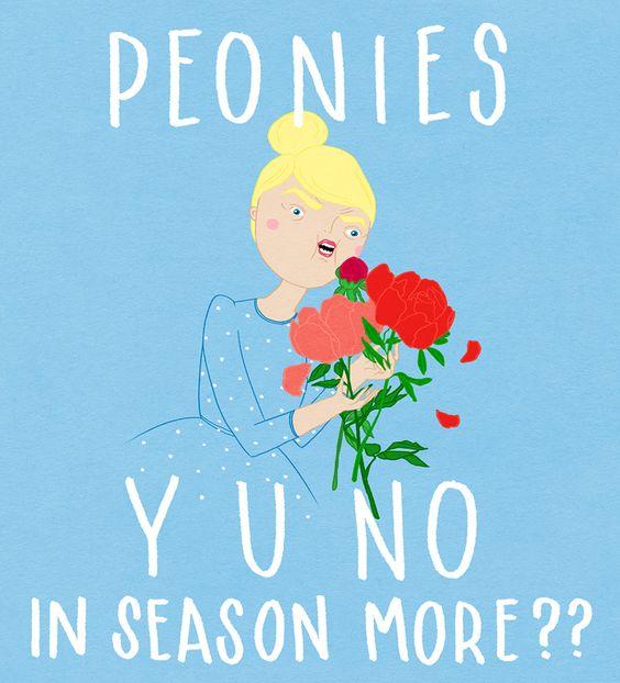 lol, my kind of meme by Kris Atomic: Loves Peonies, Illustration Krisatomic, Peonies Bloomed, Atomic Peonies, Peonies Fav, Yuno Krisatomic, Favorite Flower