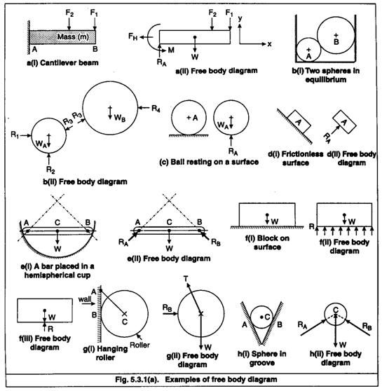 Free Body Diagram Worksheet - Delibertad