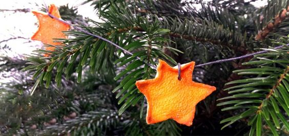 Eigentlich ist es doch schade, den Christbaum nach Weihnachten zu entsorgen. Besser ist es doch, wenn man den Weihnachtsbaum weiterverwenden kann, z.B. im Garten!