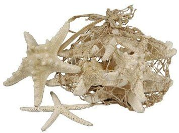 Assorted Natural Starfish - Pk.8: Amazon.co.uk: Kitchen & Home