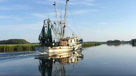 Shrimpin boat