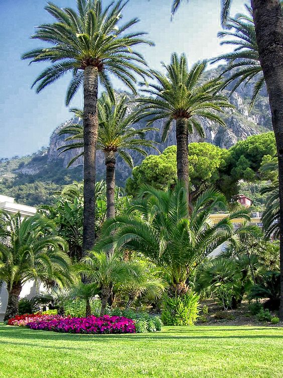 Jardin Maria Serena in Menton. Tropical gardens in Menton, French Riviera, France