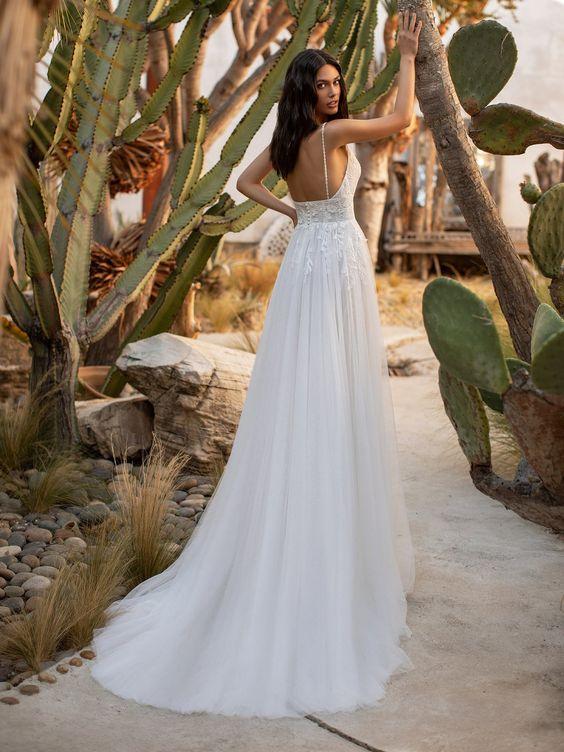 Bride Cactus